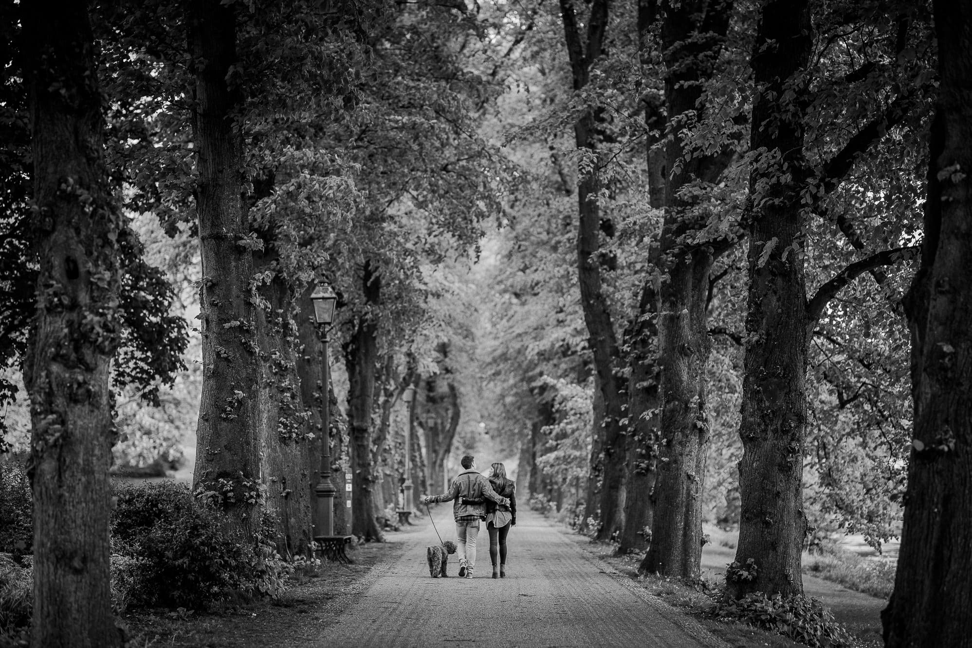 Bride and groom walking through trees with their dog