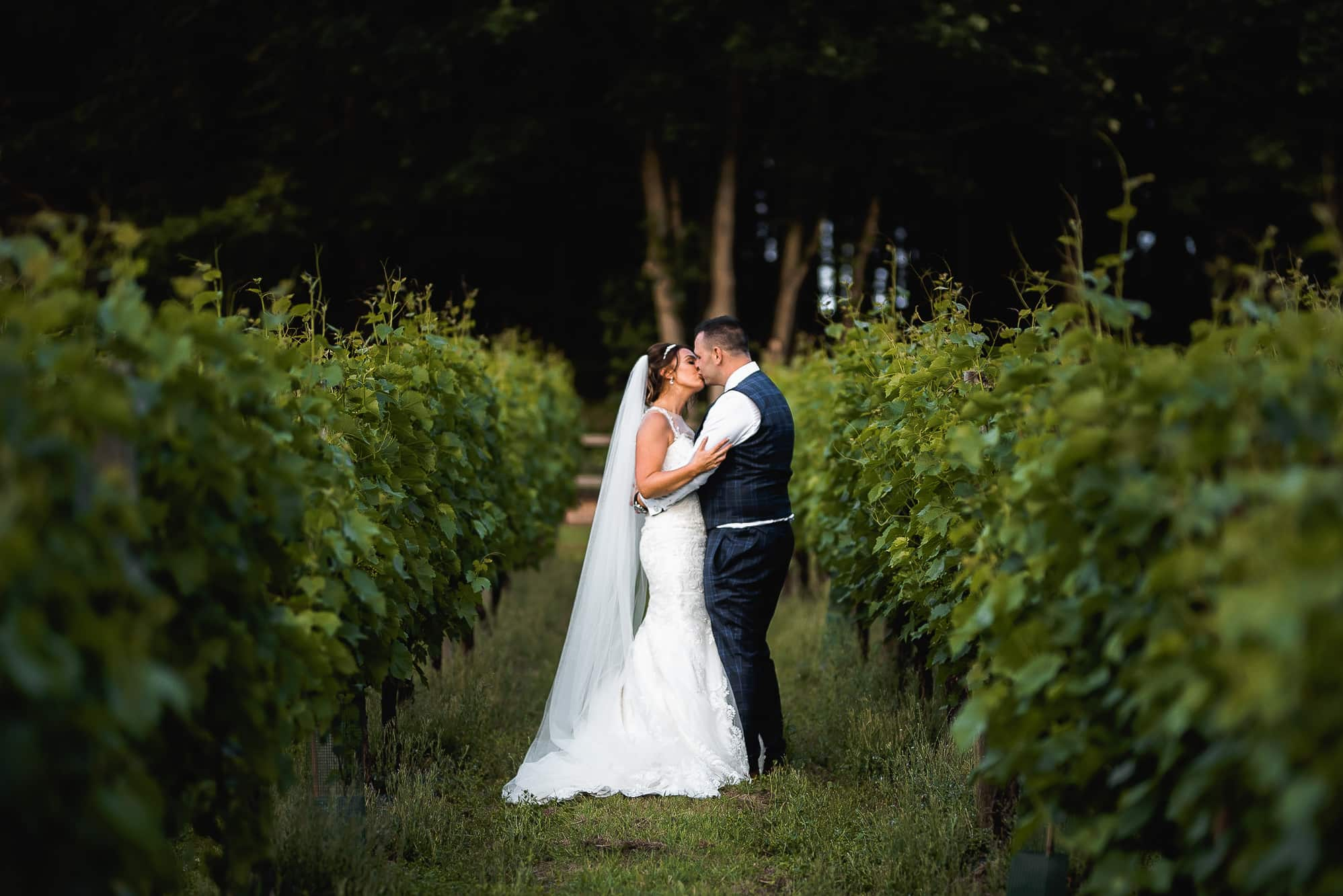 Close photo of the bride and groom in the vineyard