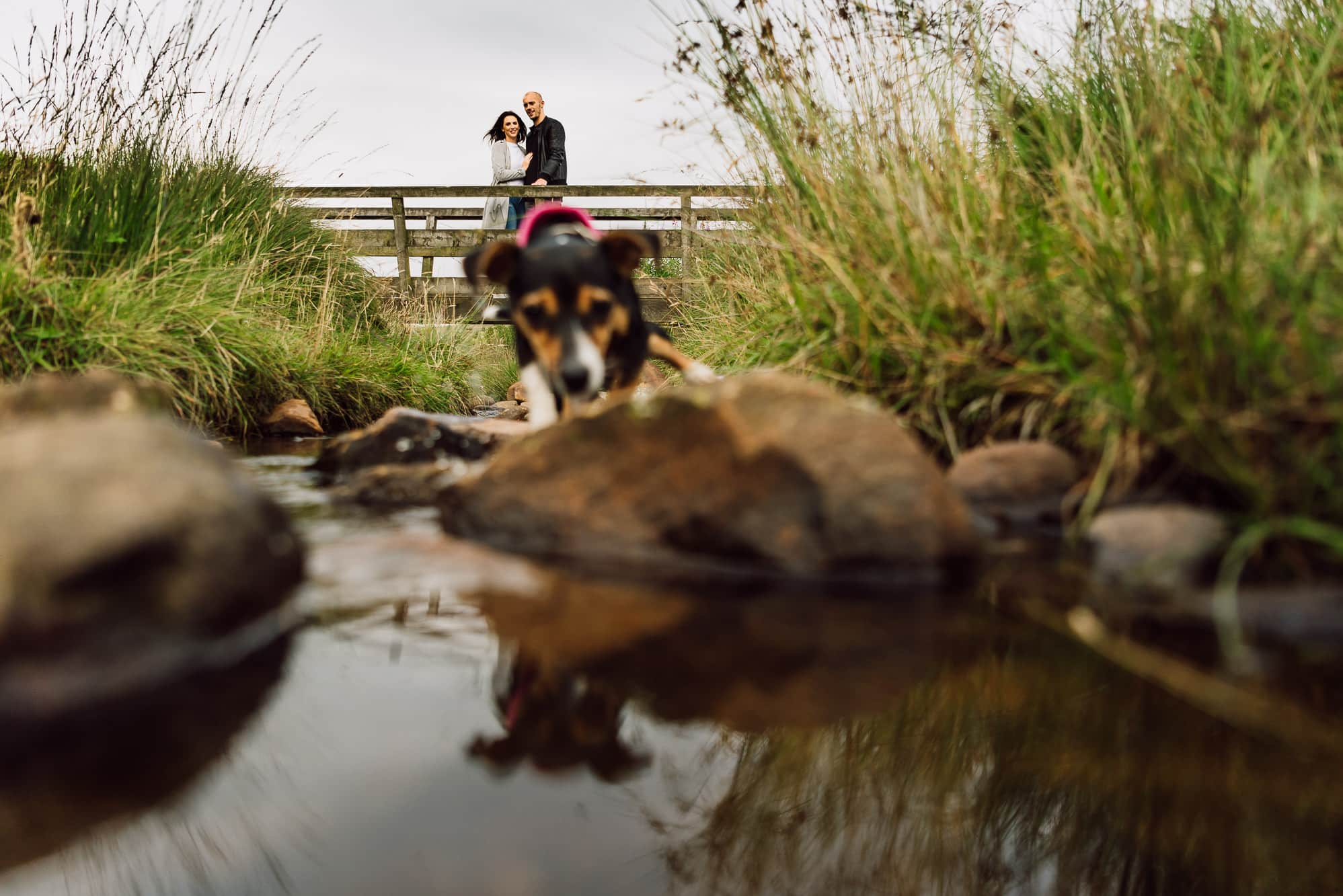 couple on bridge with dog in front of them
