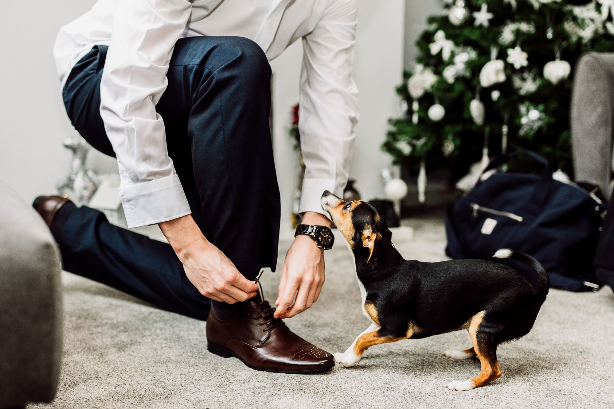 Groom doing up his shoe laces with his dog looking on
