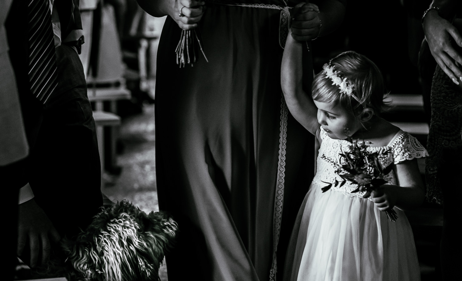 Flower girl walking in and looking at dog