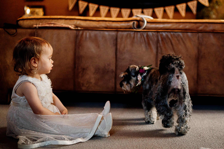 Dog and bridesmaid at Falcon Manor